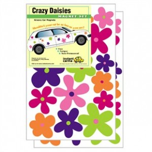 Crazy Daisies Flower Car Magnets