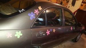 Crazy Daisies Car Magnet Set